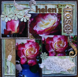 Helens_rose